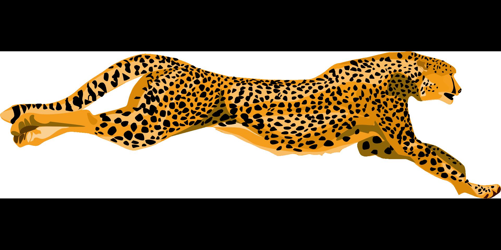 how fast cheetah run