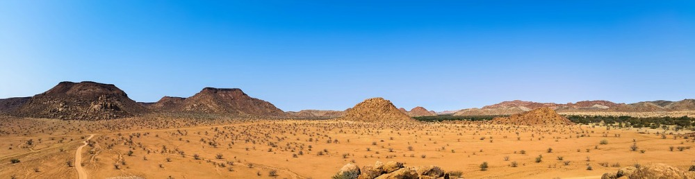 Etosha National park pictures