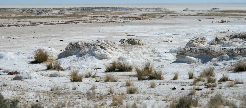 Etosha Namibia pan