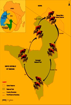 serengeti national park map